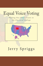 Equal Voice Voting Book Cover