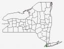 New York County Map Highlighting Kings County